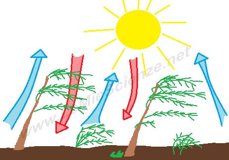 Risultati immagini per il vento come si forma